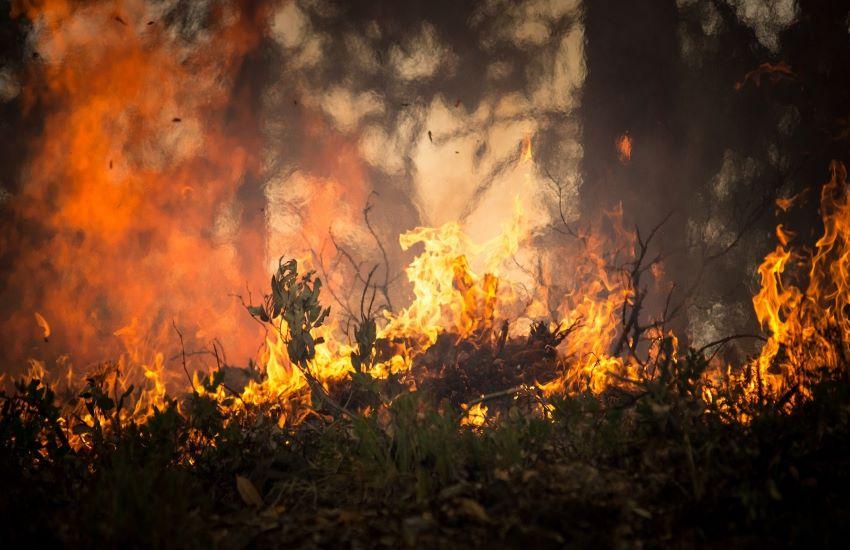 Allarme incendi a Messina, in Comune conferenza con le associazioni