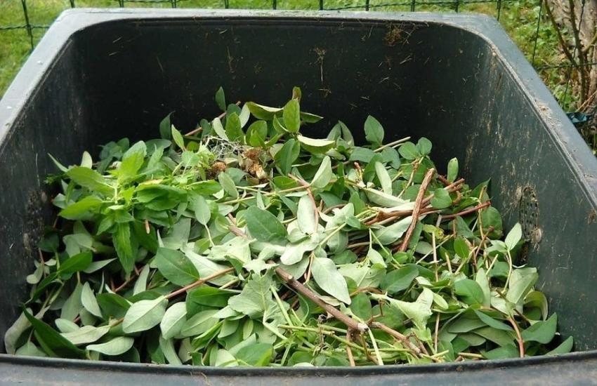 Bergamo, spostato servizio ritiro rifiuti vegetali