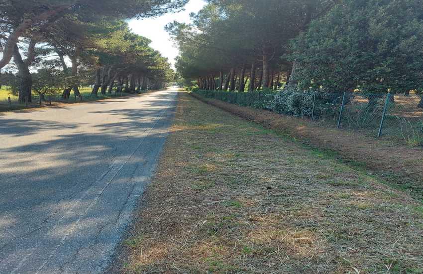 Sfalcio dell'erba a Piombino: proseguono i lavori