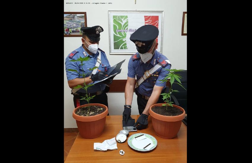 Denunciati dai carabinieri di Aquino due uomini per possesso di stupefacenti