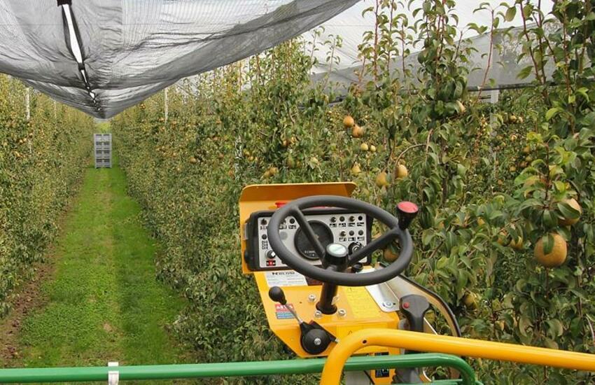 Bassa Padovana, carro ribaltato per raccolta mele: donna ferita gravemente