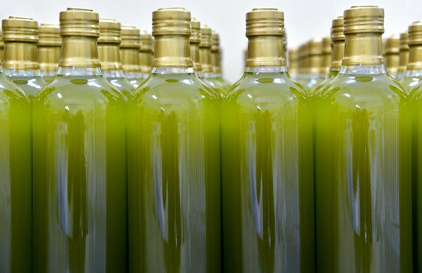 Coldiretti Puglia, in 3 mesi -10,4% export olio extravergine
