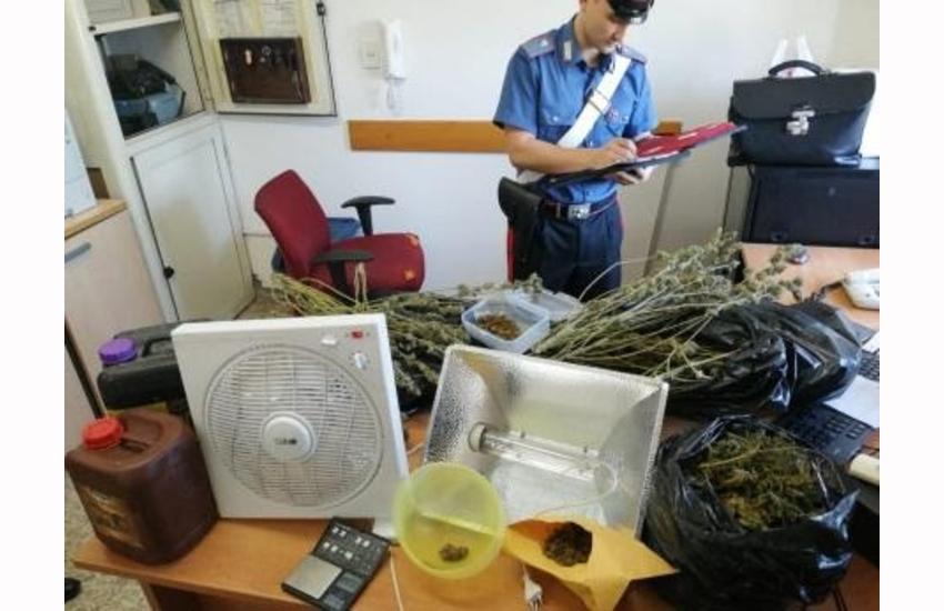 Coltivava marijuana in casa, arrestato ad Aprilia