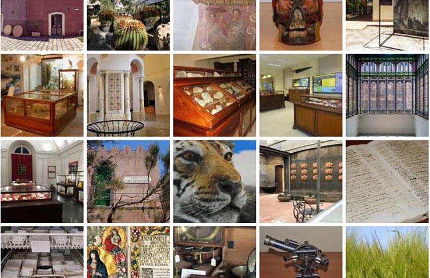 """""""Pillole di Museo"""", tour virtuali alla scoperta del patrimonio museale di Unict"""
