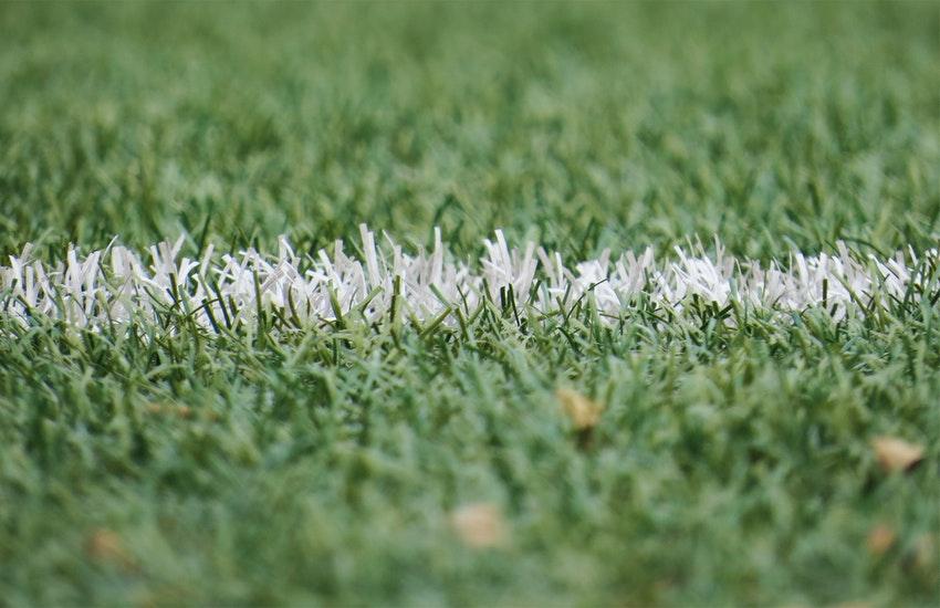 Sampdoria-Bologna: le parole dei mister in vista della gara