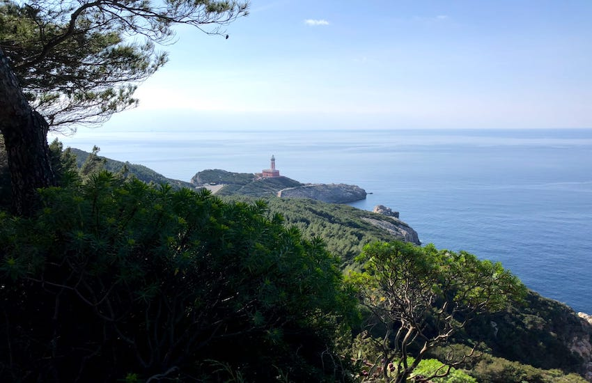 Capri, trasporti marittimi