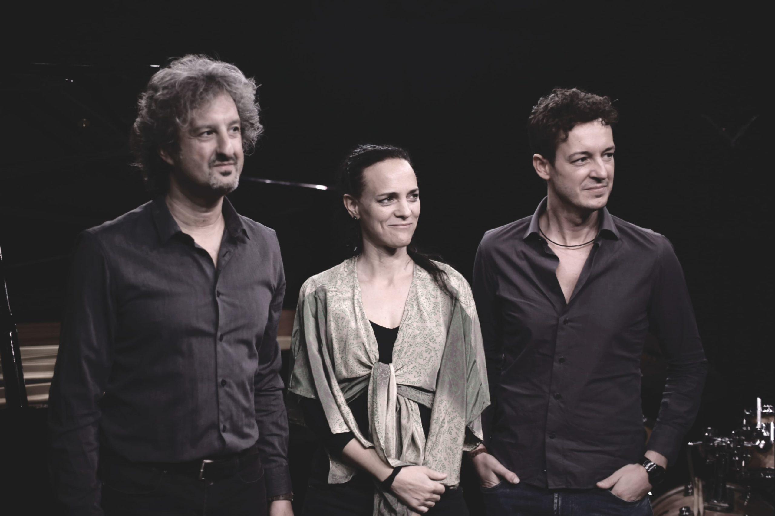 trio musica