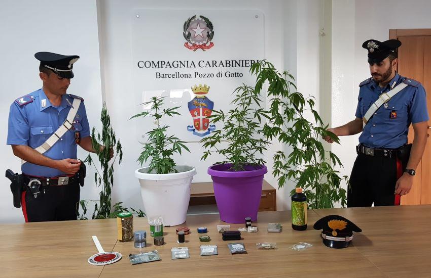 Carabinieri, per coltivazione e detenzione a fini di spaccio arrestato 57enne