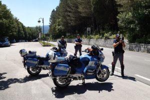 Incidenti stradali provocati da fauna selvatica: attività di prevenzione della Polizia Stradale