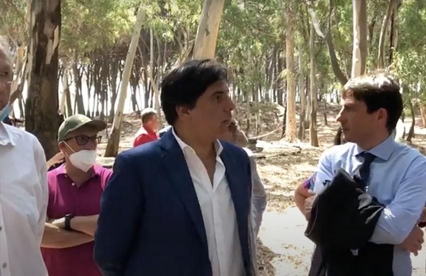 Playa, lavori in corso al boschetto: il 31 luglio riaprirà e diventerà «luogo di eventi per l'ambiente»