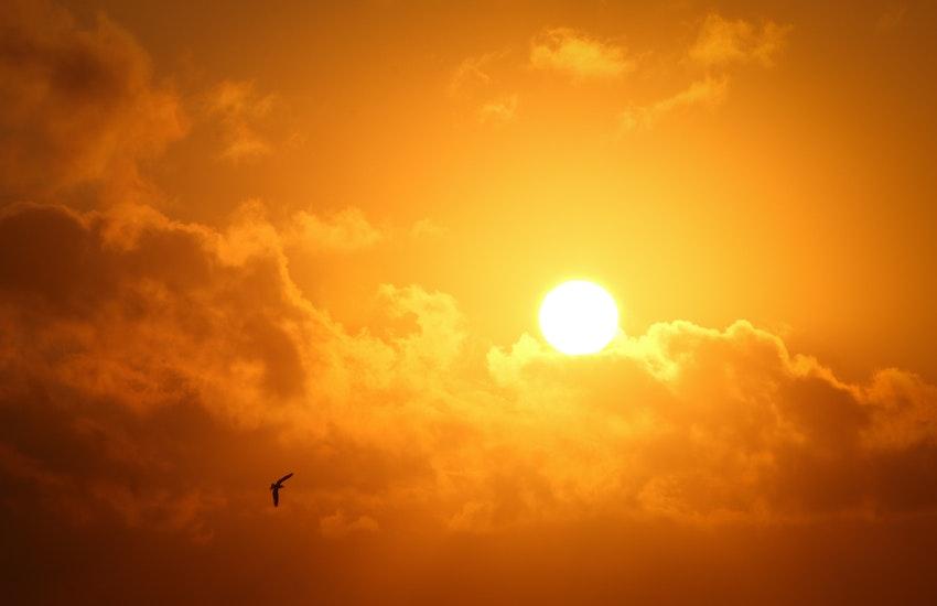 Ondata di calore Bologna: la morsa del caldo si estende