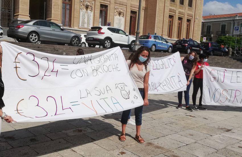 """""""Affaire"""" randagi, la protesta dei volontari e degli animalisti di Messina"""
