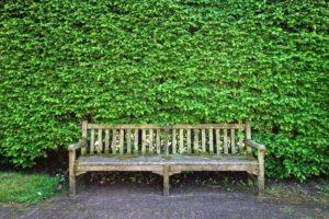 Riaprono tutti i giardini e aree verdi comunali