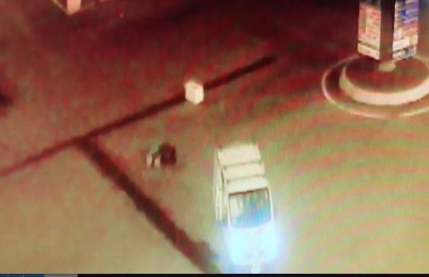 Porta Nuova: furgone perde elettrodomestici e li lascia sulla rotatoria