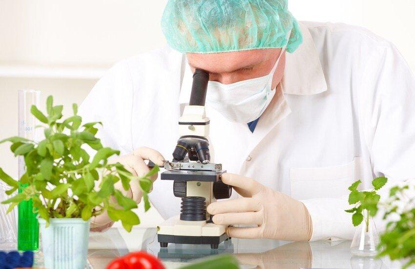 Alimentazione e Covid-19: uno studio dell'Ospedale San Martino sui benefici della dieta chetogenica che aiuta i pazienti covid positivi