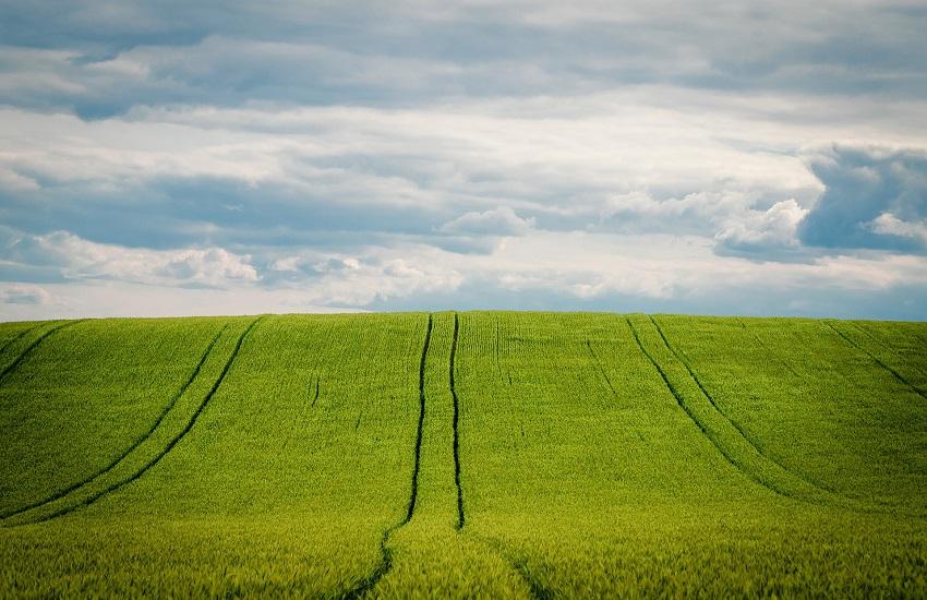 Regione: pubblicata la graduatoria del pacchetto giovani per i nuovi insediamenti in agricoltura