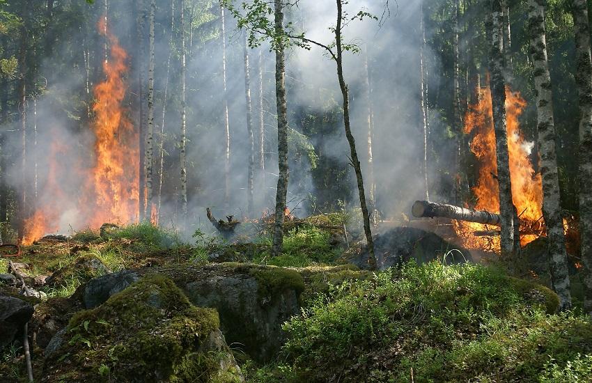 Incendio a Casaline di Preturo: identificato il presunto autore del gesto
