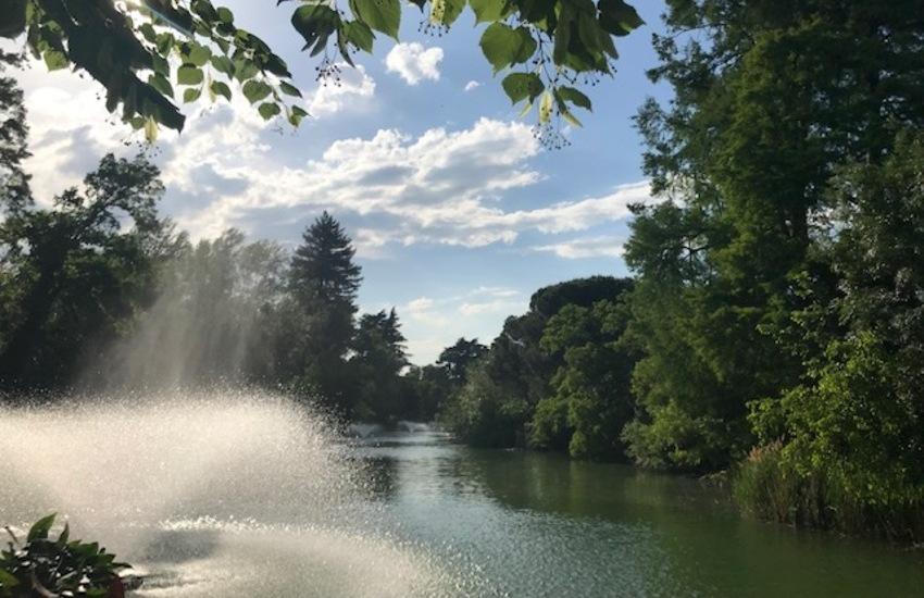 Cani senza guinzaglio ai Giardini Margherita: risponde l'assessore Aitini