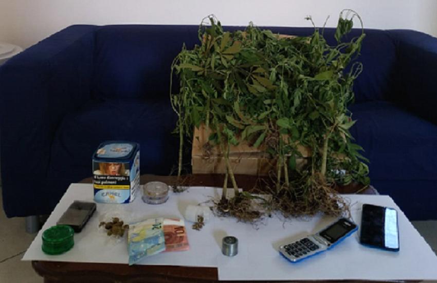 Forniva droga a un minore: arrestato ex educatore di una Casa famiglia
