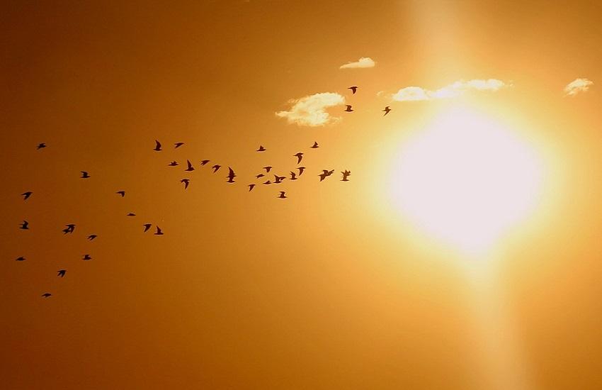Meteo L'Aquila: oggi è previsto bel tempo