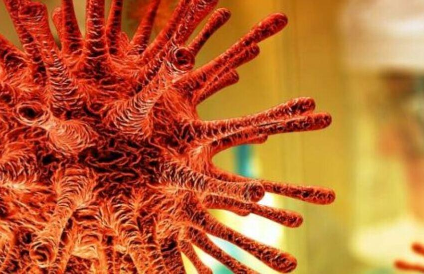 Coronavirus: sono 44 i nuovi casi positivi al Covid-19 in Calabria