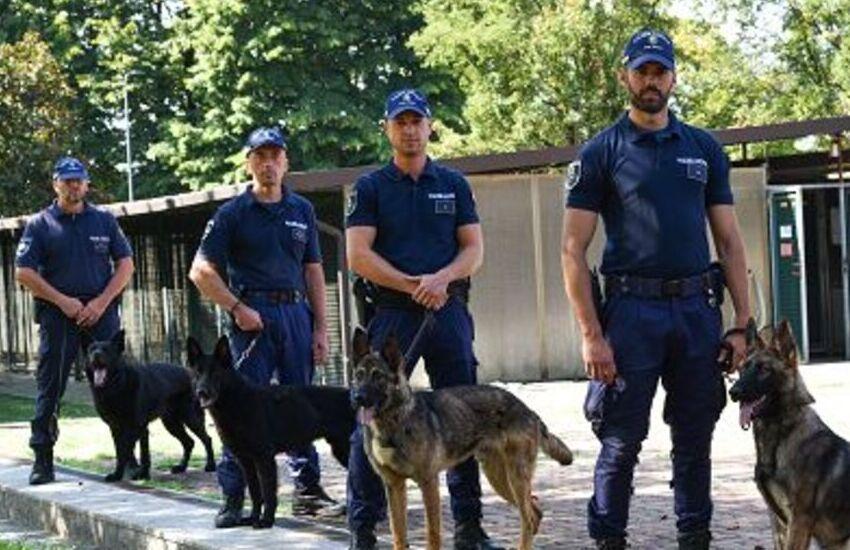 Padova, il cane antidroga Lucky scova oltre mezzo kg. di hashish per valore di 1500 euro
