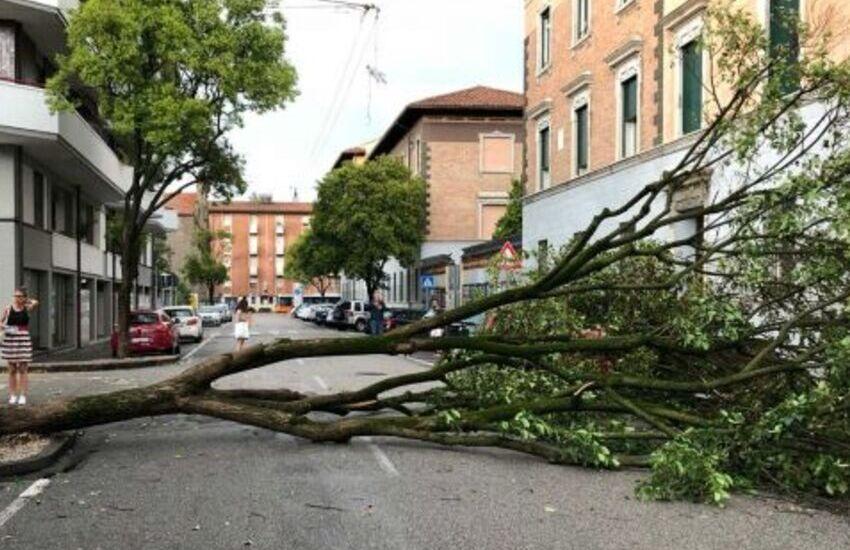 Padova, 44 richieste d'intervento vigili tra Alta e Bassa Padovana