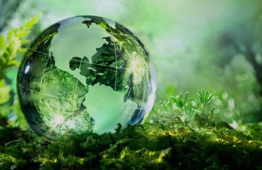 """Padova, """"Raccogliamo miglia verdi"""": iniziativa di sostenibilità ambientale per gli alunni"""