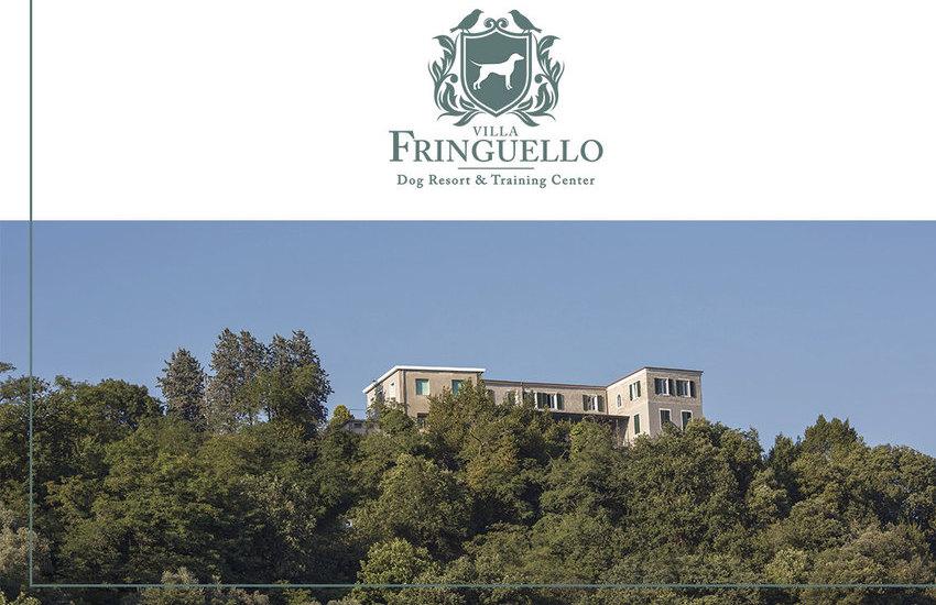 Villa Fringuello