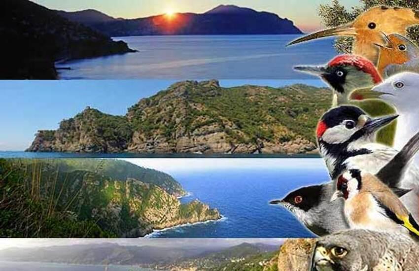 Lipu, torna Euro Birdwatching 2020 il 4 ottobre a Portofino Vetta