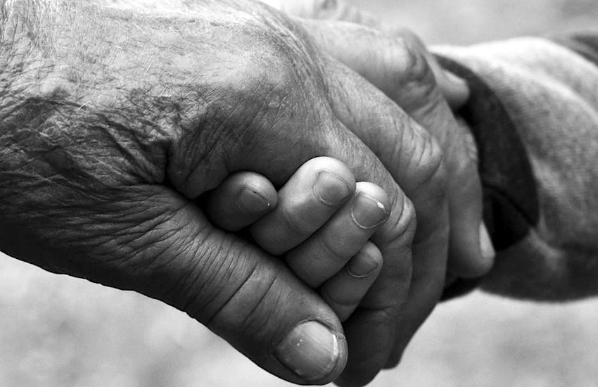 Alla Bidibi book di Riotorto si celebrano i nonni