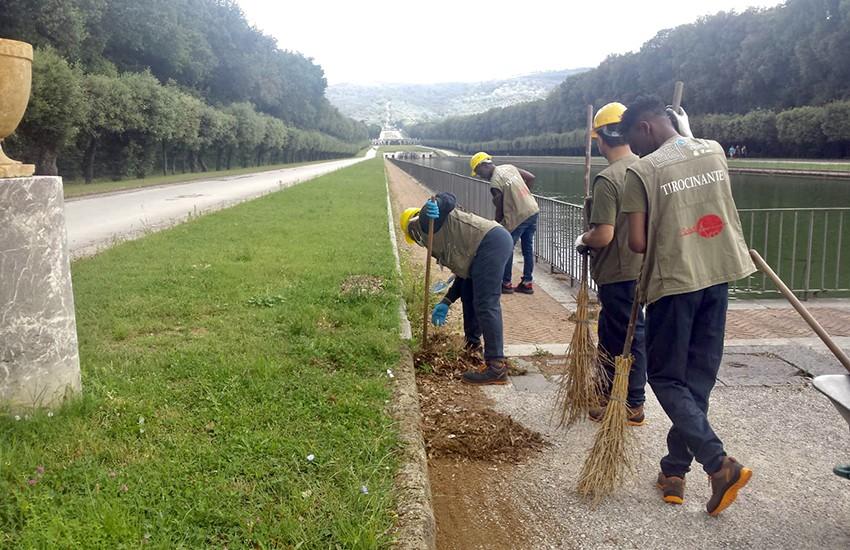 Accolti attivi: il progetto che trasforma i migranti in giardinieri alla Reggia