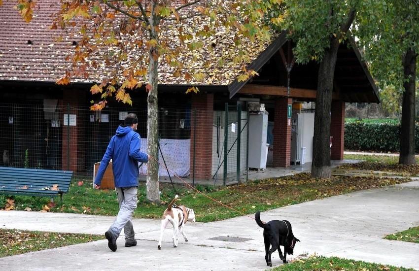 """Milano, partono i corsi per il """"Patentino cane speciale"""" previsto dal nuovo regolamento"""