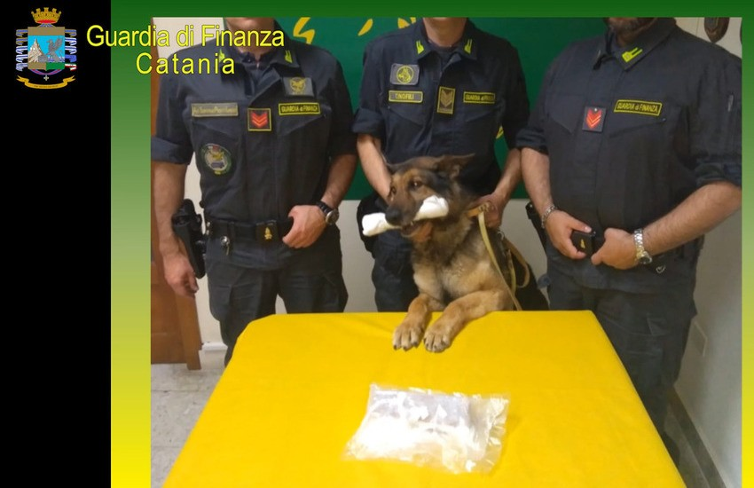 Catania, la Finanza scopre un appartamento in centro, centrale per spaccio di droga