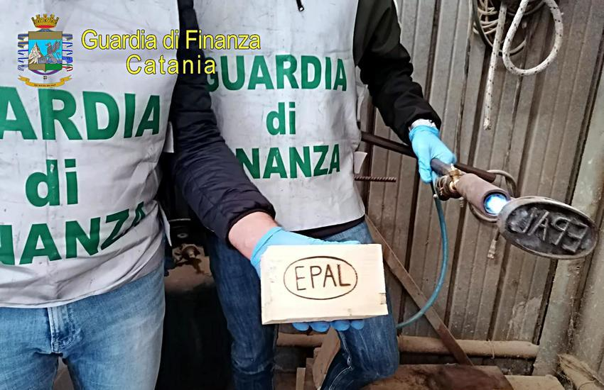 Catania, la Finanza scova lavoratori in nero impiegati per la produzione di pallet contraffatti, percettori del RdC
