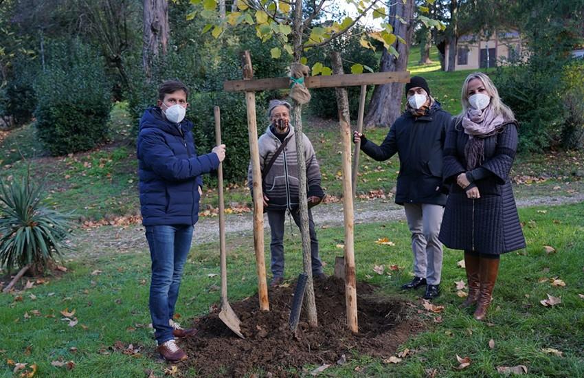 Piantati 1300 alberi per altrettanti bambini e bambine. Lo stato visualizzabile su internet