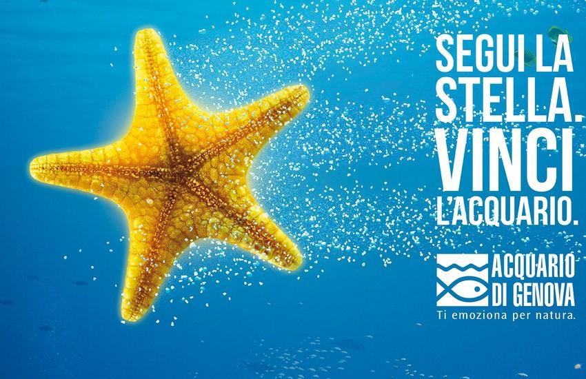 Acquario di Genova: al via oggi uno speciale concorso per condividere la magia delle feste