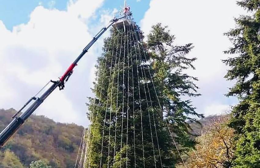 Nona edizione per l'albero di Natale vivente più alto d'Europa a Caposele