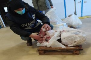 """Operazione """"FRONTIERE TRACCIABILI"""": sequestrate 3 tonnellate di prodotti ittici"""