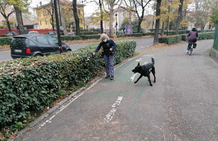 Sicurezza al parco Ducale, ora si fa sul serio