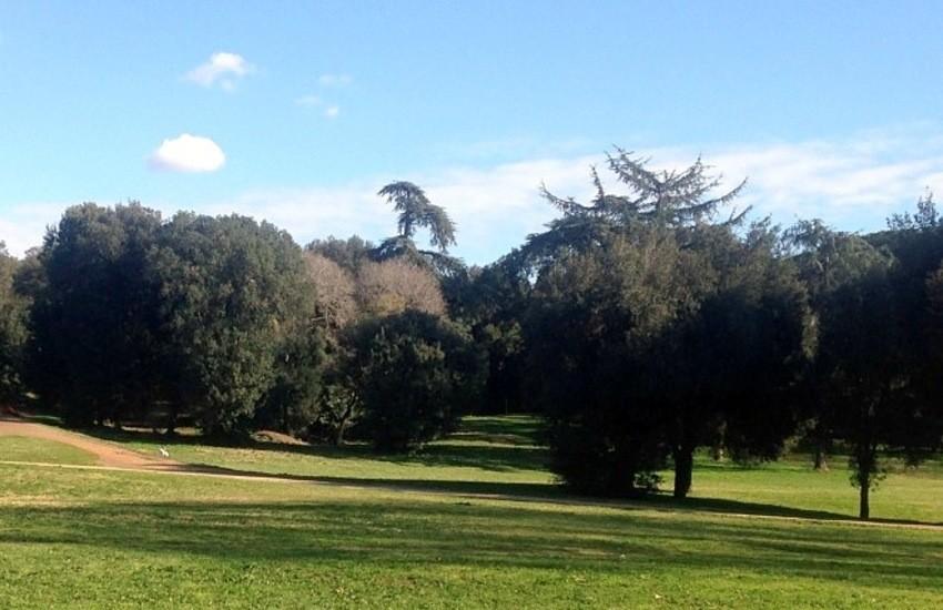Roma, verde e paesaggio urbano, approvate in Giunta modifiche al regolamento