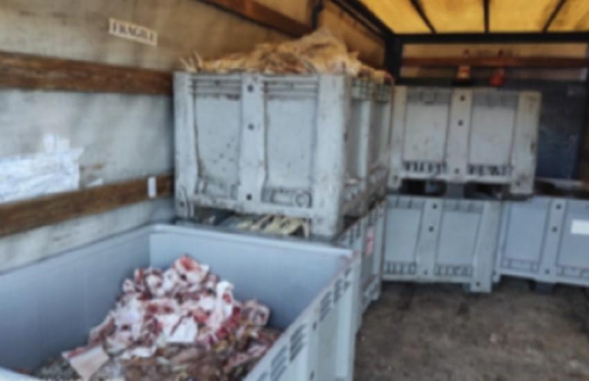Trasporto irregolare di scarti alimentari: scatta la sanzione
