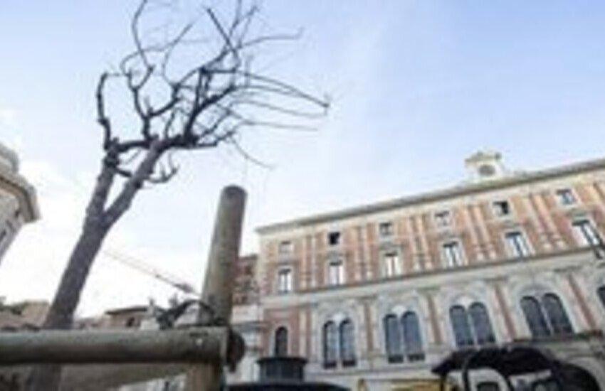 "Roma, Piazza San Silvestro, ""rinasce"" dal verde urbano"
