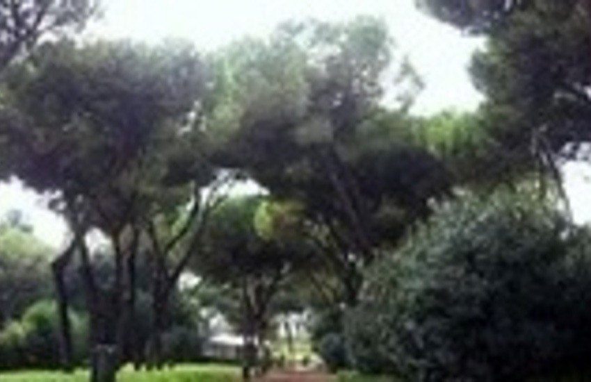Parchi pubblici e aree verdi: i loro nomi rendono onore a persone meritevoli