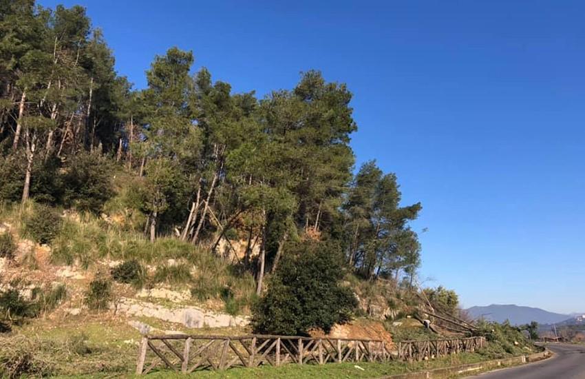 Pietramelara, ripristino e sistemazione forestale per prevenire danni da calamità