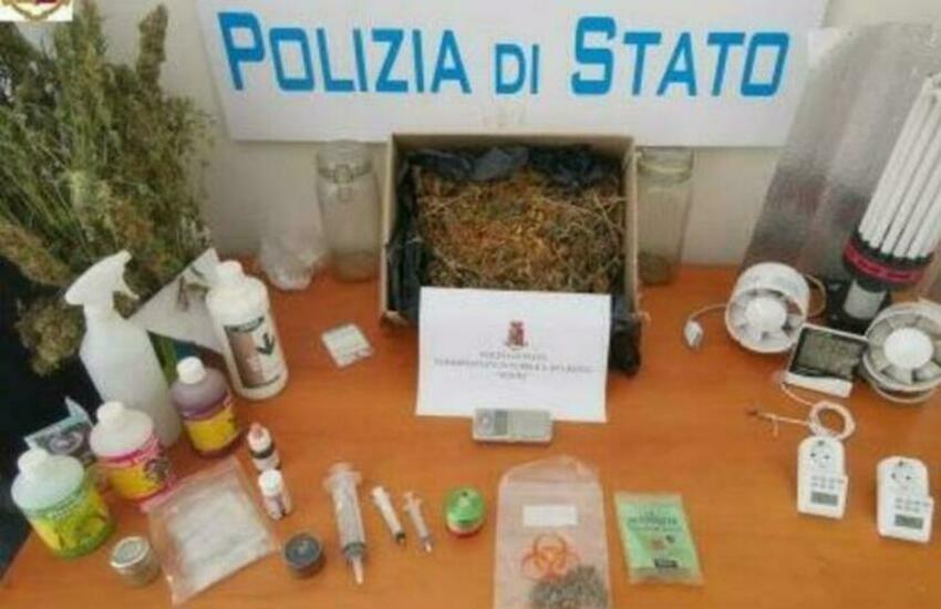 """Nesima, sequestrata coltivazione di marijuana, arrestato spacciatore col """"pollice verde"""""""