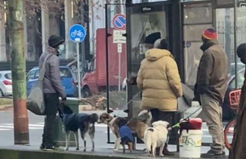 Milano, costringevano connazionali all'accattonaggio con cani. Arrestati madre e figlio