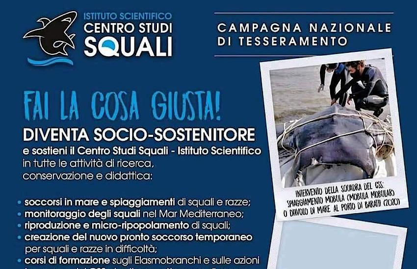 Al via la campagna di tesseramento del Centro Studi Squali