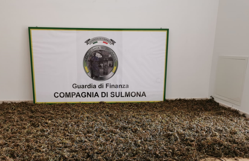 Valle Peligna, Gdf: scoperta piantagione di marijuana