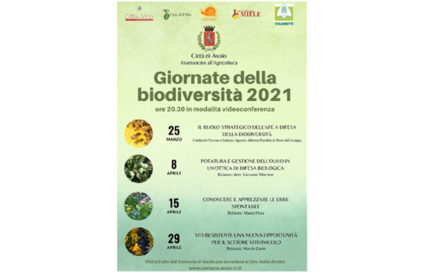 """Asolo, secondo appuntamento con le """"Giornate della Biodiversità"""", dedicato ai temi dell'olivicoltura"""